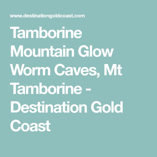 Tamborine Mountain Glow Worm Caves, Mt Tamborine - Destination Gold Coast