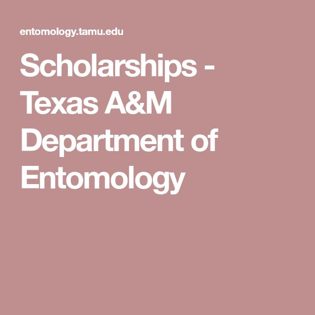best texas a m scholarships ideas school tips  scholarships texas a m department of entomology