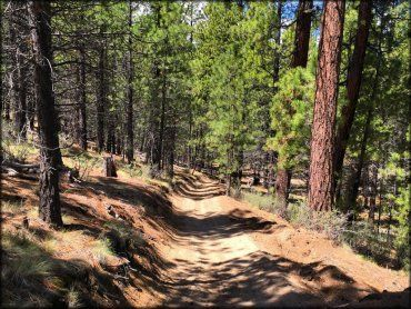 atv oregon ohv trails fort rock trail east system maps utv road camping central fees regulations directions driving playgrounds tracks