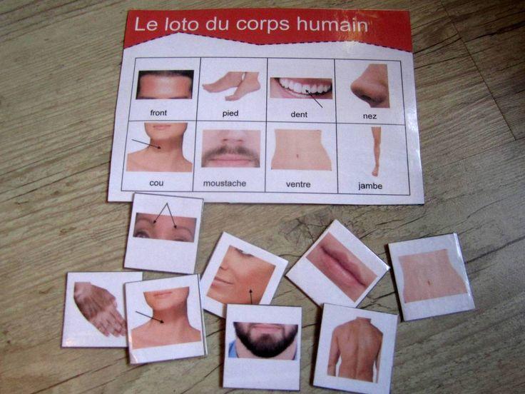 Loto sur le corps humain