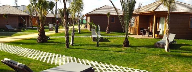 Bungalow bali en marjal costa blanca eco camping resort for Bungalows dentro del mar
