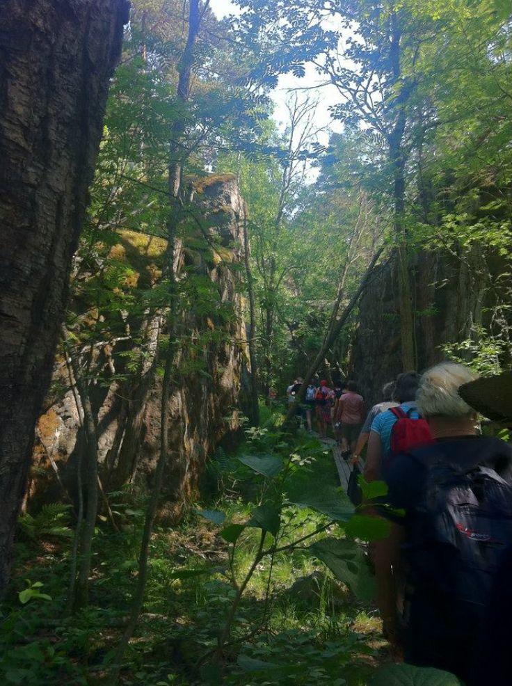 Go trekking to Ulko-Tammio island