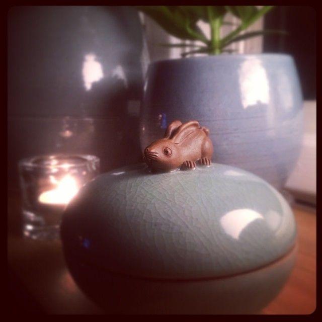 Ask med liten kanin hemma hos Frida