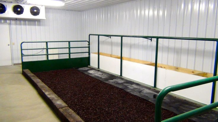 Show Cattle Cool Room. I like the flooring where the cattle stand, this would work great for after the calves are halter broke.
