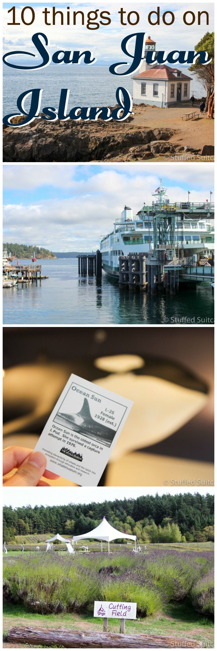 If you're taking a vacation to the west coast, be sure to plan a visit to the islands - San Juan Island is charming and full of activities perfect for family travel or adventure travel.