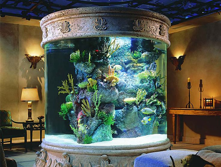 Best Unique Aquarium Design Ideas ~ http://www.lookmyhomes.com/pick-one-of-unique-aquariums-design-ideas-for-your-fish/
