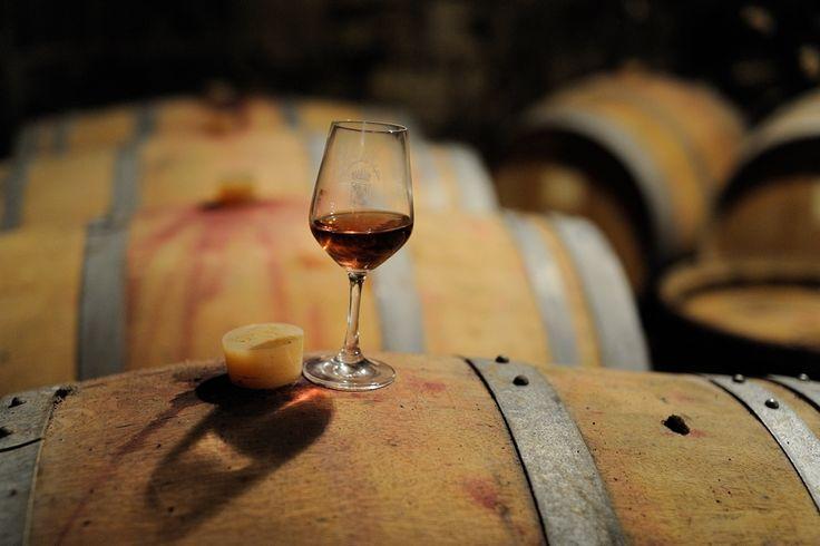Séjour vins et randos