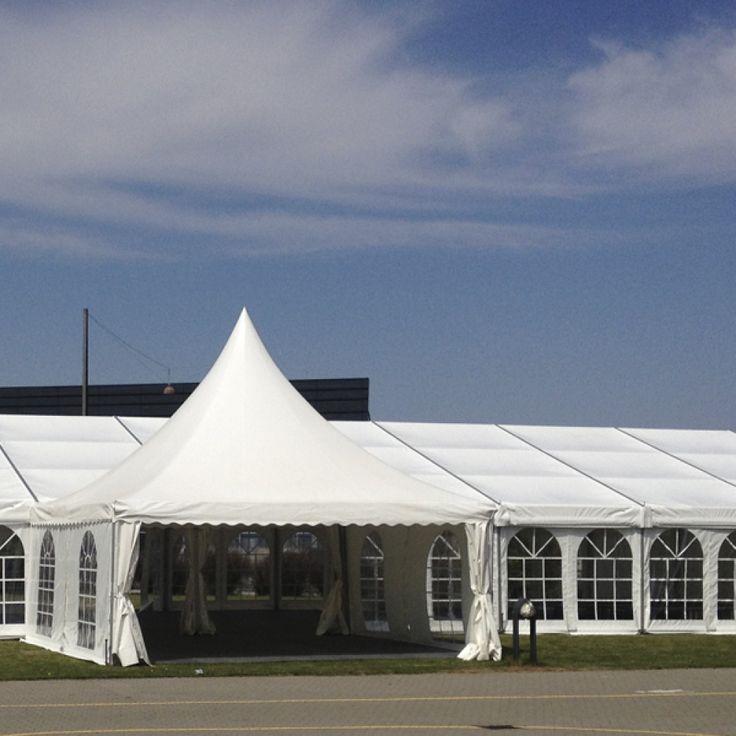 12 meter teltudlejning