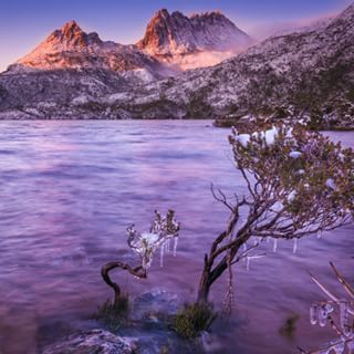 Maybe it's the mountains?   26 Beautiful Reasons Tasmania Is One Of The Best Islands In The World