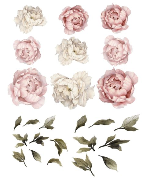 Peony Flower Wall Stickers add floral vintage fun to your wall! Just peel and stick our watercolor peonies to a wall in your nursery, kids room or home office.