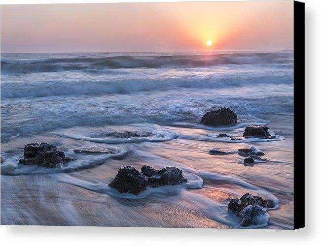 Near St. Augustine Beach, florida, the coquina rock stand the test of time resisting erosion along the coastline.