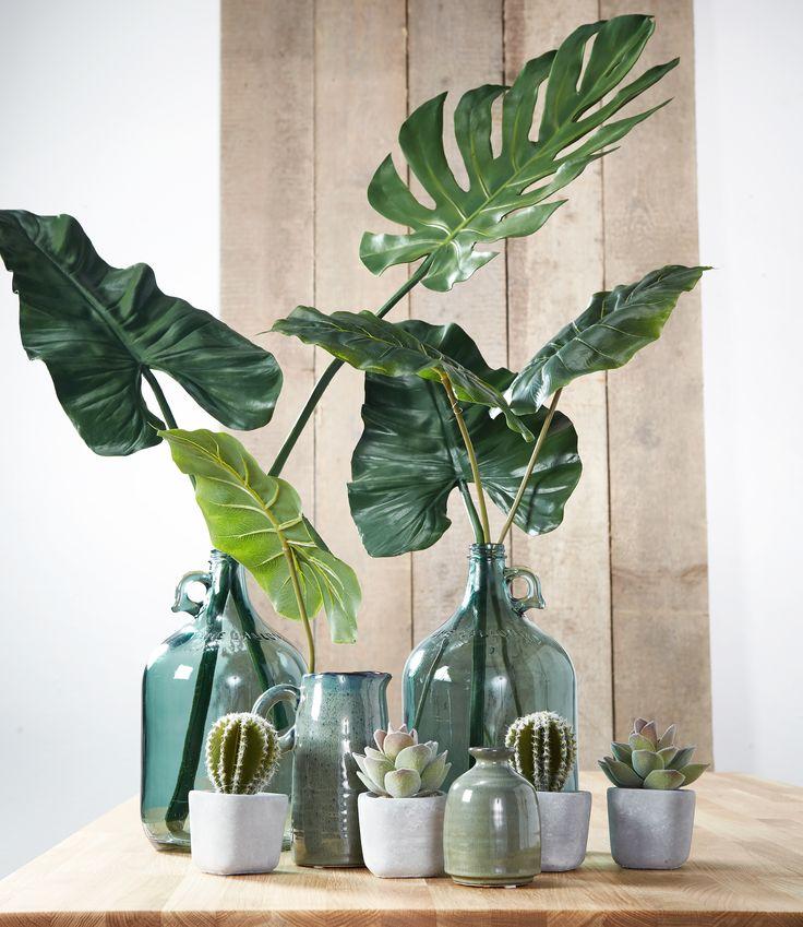 Ook in de herfst haal je groen in huis met deze gezellige decoratie! #wonen #woondecoratie #groeninhuis #groen #kwantum #woonkamer