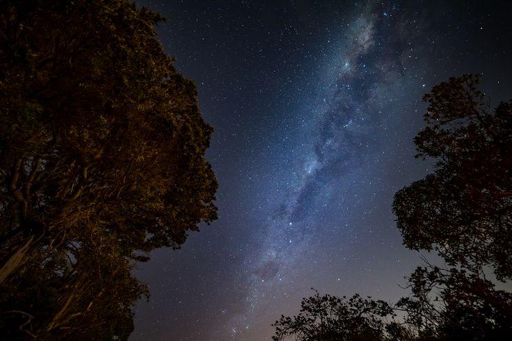 Night Sky, Matiu Somes Island