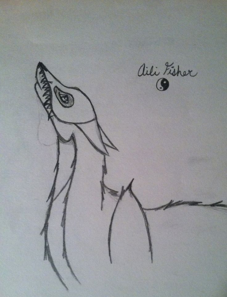 my wolf drawing named bandit who where s a skull mask aili