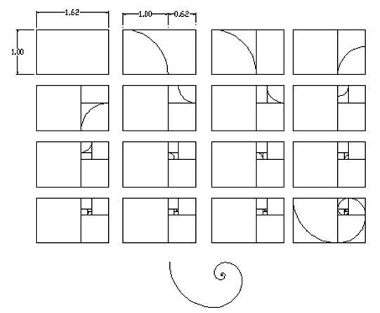 Ms de 25 ideas increbles sobre Espiral aurea en Pinterest