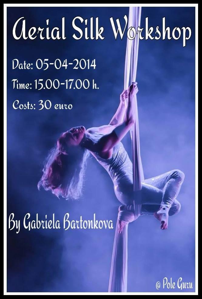 Aerial Silk Workshop @ Pole Dance Studio Pole Guru