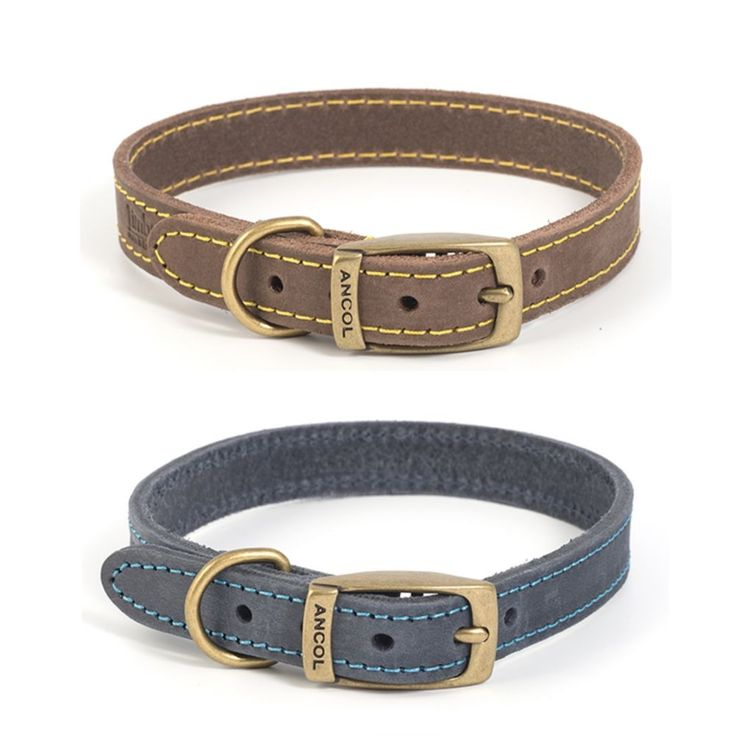 Ancol Timberwolf Leather Dog Puppy Collar Sable Brown Blue Navy in Pet Supplies, Dog Supplies, Collars | eBay