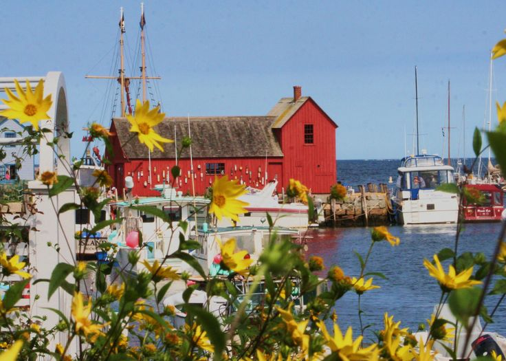 The #1 Motif on the harbor in Rockport, MA.  http://en.wikipedia.org/wiki/Motif_Number_1