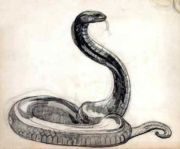 chinese art snake - photo #12