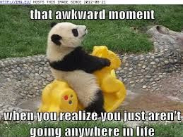 Haha I've felt what the panda is going through. But then again I'm not a panda so yea.