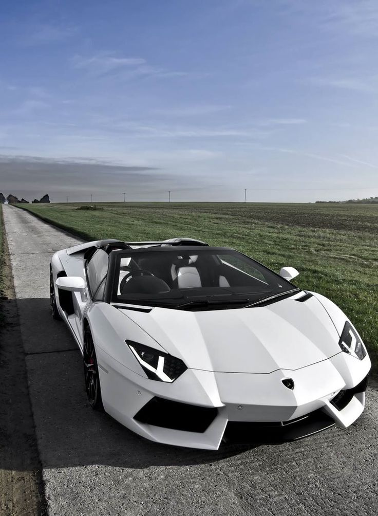 The Lamborghini Aventador Roadster... Kinda looks like Speed Racer's Mach 5!