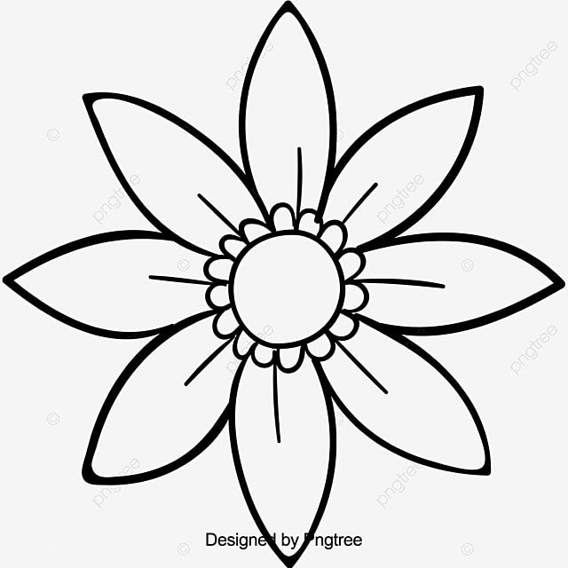 Gambar Bunga Sketsa Tangan Kartun Yang Indah Cantik Kartun Lukisan Tangan Png Dan Vektor Dengan Latar Belakang Transparan Untuk Unduh Gratis Di 2021 Sketsa Kartun Bunga