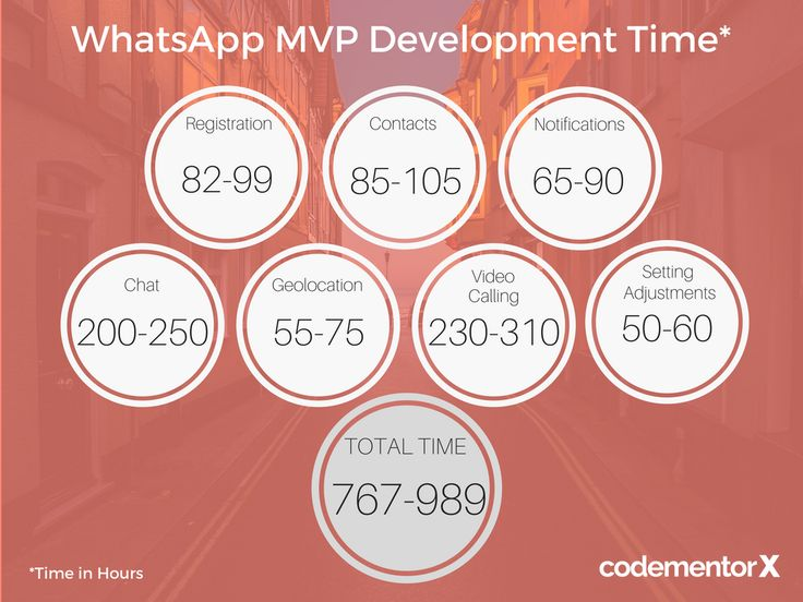 WhatsApp MVP App Development Cost
