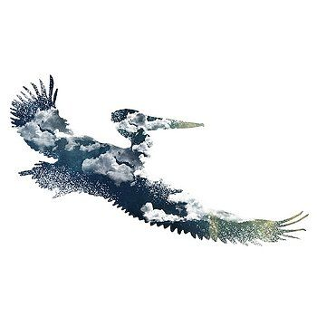 Nostalgic Art - Flying Pelican