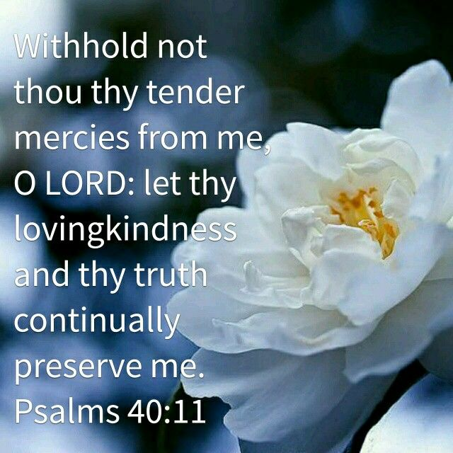 "Psalms 40:11 KJV ""Withhold not thou thy tender mercies from me, O Lord: let thy lovingkindness and thy truth continually preserve me."""