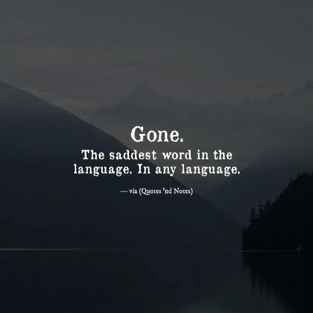 Gone. The saddest word in the language. In any language. via (http://ift.tt/2heb4do)