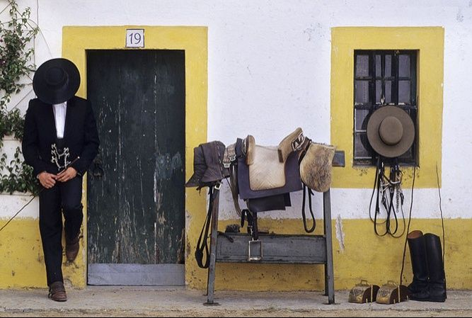 Portugal - Alentejo, Stud farm Ervideira  Ok, I know you noticed the 'stud' on the left but horses too ;)