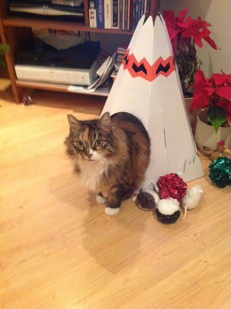 Minnie and teepee. Discover more at https://www.youtube.com/playlist?list=PLeEVCLOCmMS40_qh92p6kPBBxcaPaYtP9