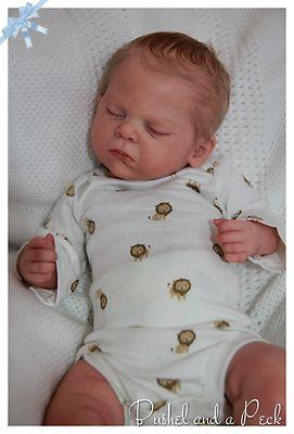 Best 25 Reborn Babies Ideas On Pinterest Reborn Baby