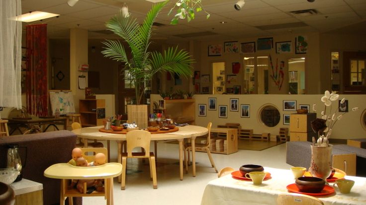 Beautiful learning environment ~ check out the tropical plant in a central location.