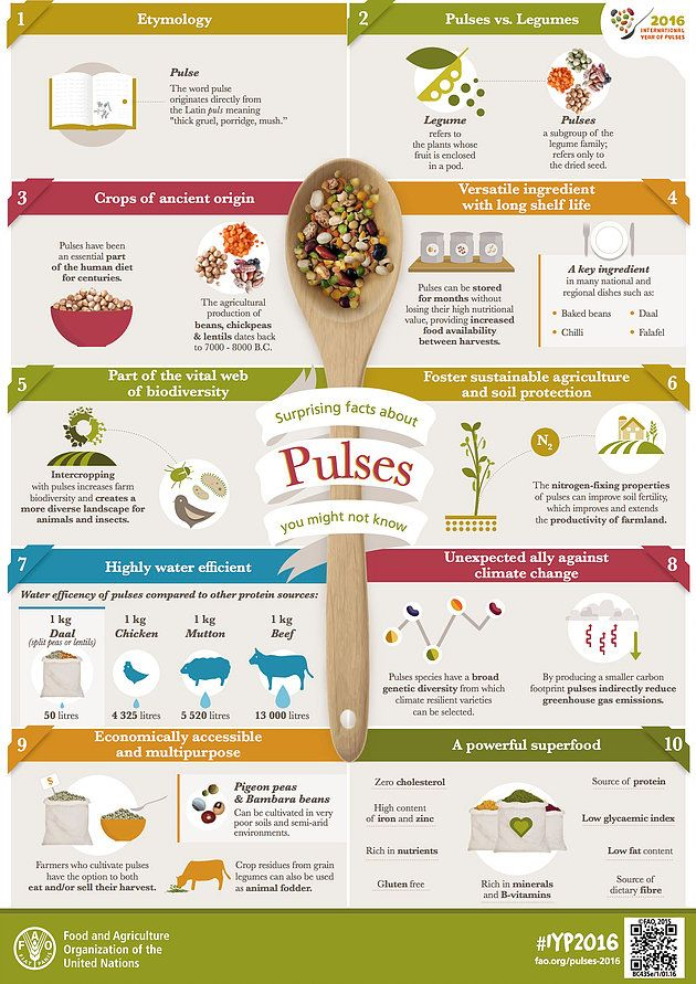 Celebrate the international year of pulses by learning the health benefits of these great dried seeds & how to incorporate these nutrition powerhouses into you