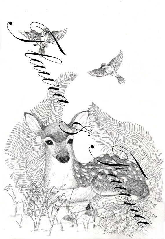 Flaura & Fauna Fawn illustration print