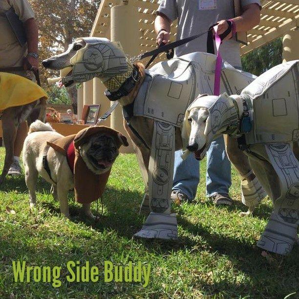 Wrong side Buddy! #starwars
