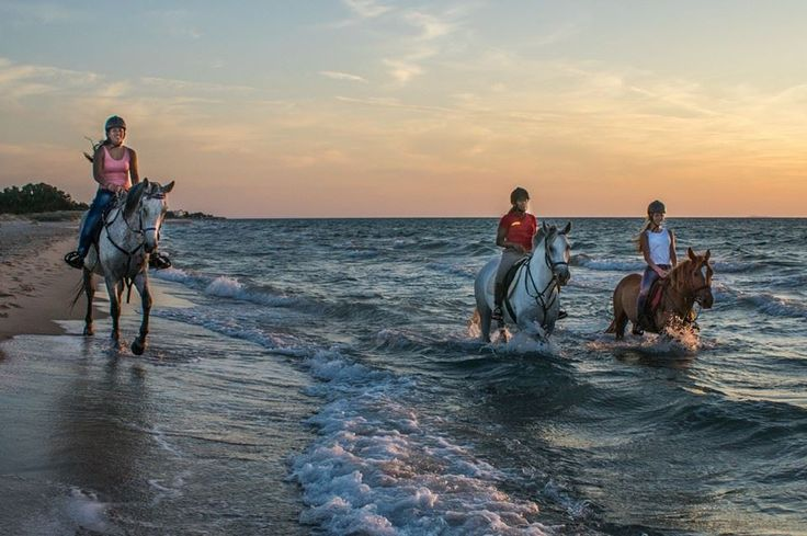 Enjoy horse-riding by the beach at Kipriotis Hotels. Ask us for all the arrangements.  #horseriding #horsesbeach #horses #kosisland photo by : errikas