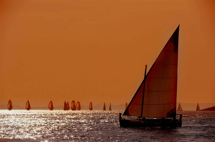 sailing the wine dark sea essay