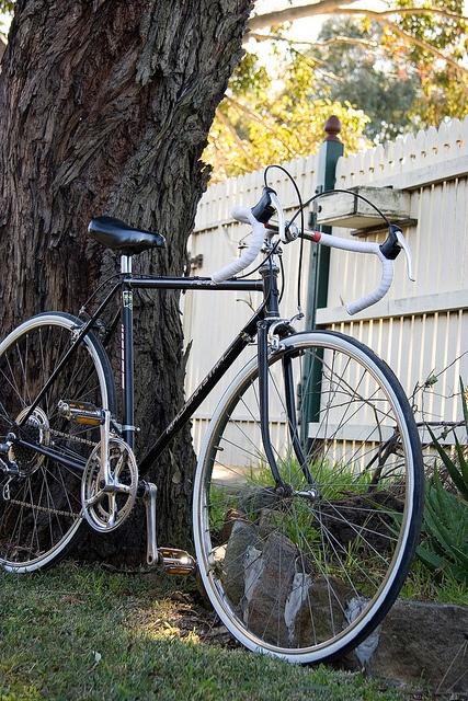 bike art by Delightful Cycles, via Flickr