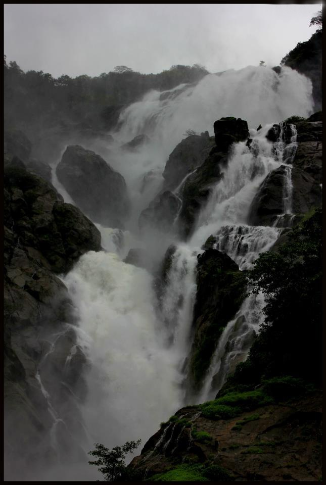Dudhsagar Waterfalls can be reached through an adventurous jeep ride that adds further excitement. You can enjoy swimming with your partner in the pool where the water falls. This gives a thrilling experience. This beautiful destination is like a heaven.