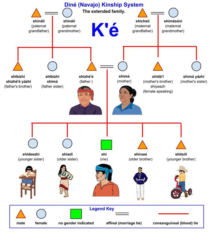 Diné (Navajo) Kinship System