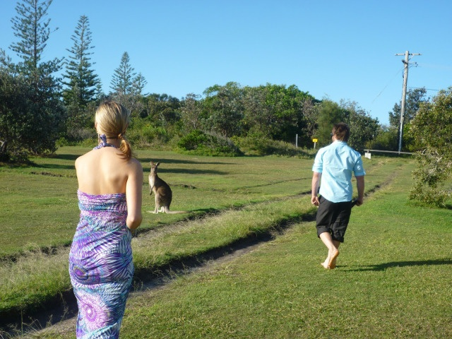 Even the local wallabies made an appearance at Mitch and Carol's Sandon River barefoot beach wedding.