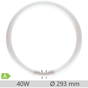 Tub fluorescent circular Philips MASTER TL5 Circular 40W, 2GX13, 8000 ore, lumina neutra