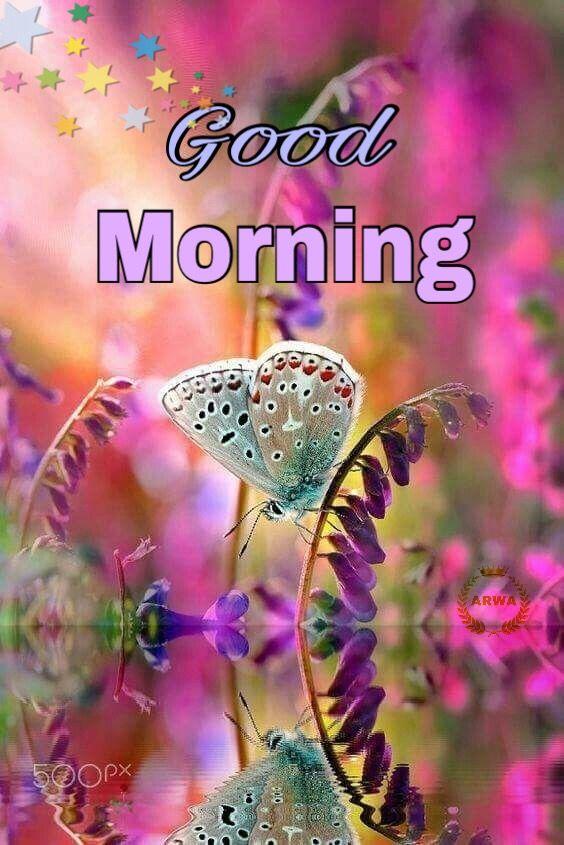 good morning pinterest