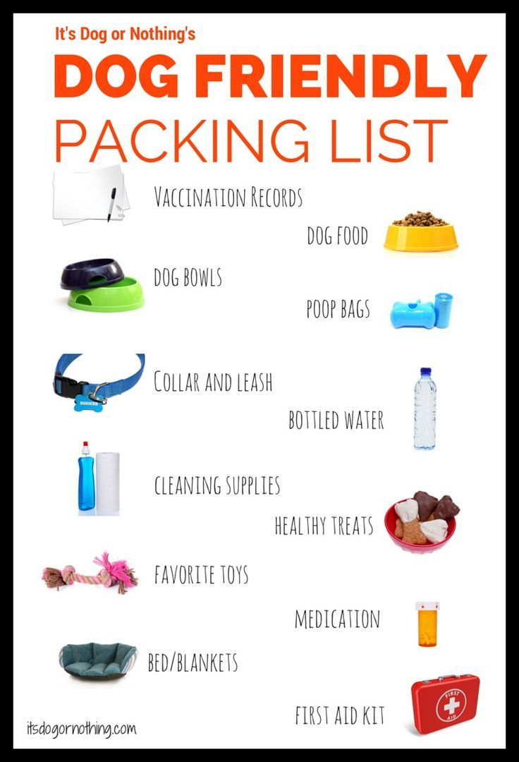 #DogFriendly #travel packing list for traveling with your furry friend.