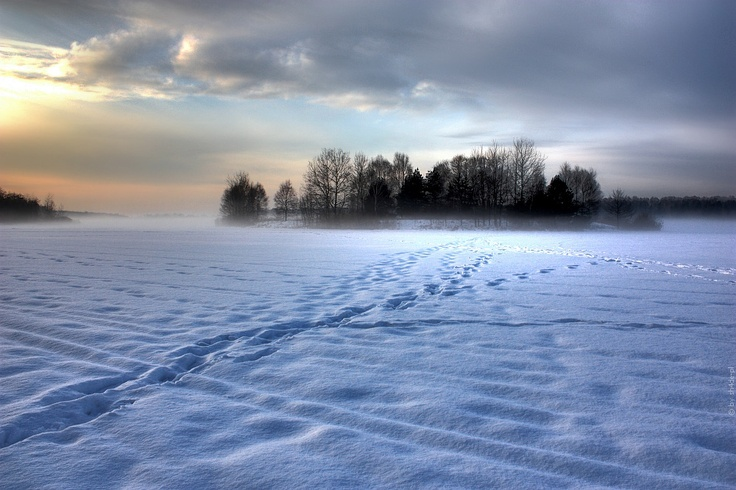 mysterious fog - Tychy by shade-pl.deviantart.com on @deviantART