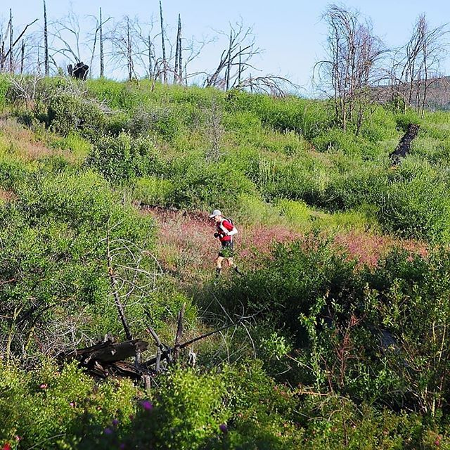 FBF to the 2015 San Diego 100 Mile Endurance Run, my first hundred. I believe this section was early in the race before the Paso Picacho aid station. Although I am not running the  in 2017 I will be out there volunteering. By @jeffmiller #zensah #withoutlimitz #xc #running #fitlife #teamzensah #athlete  #1qt #brandambassador
