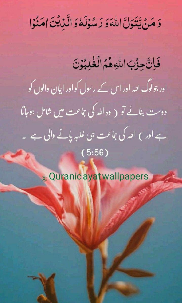 Qurani Ayat With Urdu Translation Quran Quotes Verses Quran Quotes Quran Verses
