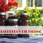 Blackberry pie filling recipe from my farm house kitchen